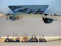 Sorcha Ní ThreasaighEmily Ní BhrosnacháinJane Ní MhurchúFallon Ní GhrifínSarah Ní Laoithe with helpers  On ladders:Michéal de BhailísJoe Ó Beaglaoi . Transition Year Art Students from Pobalscoil Chorca Dhuibhne, Dingle arrive with their work of art which took over 6 months of planning